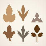 Decorative brown leaves pattern set isolated on white . Various shapes of brown leaves. Elements for eco and bio logos Royalty Free Stock Images