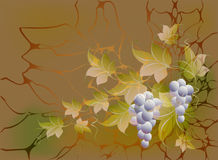 Decorative bunches of grapes and leaves on autumn background in yellow and orange shades. EPS10 vector illustration Royalty Free Stock Images