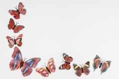 Decorative butterflies. On a colored background Stock Images