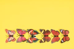 Decorative butterflies. On a colored background Stock Image