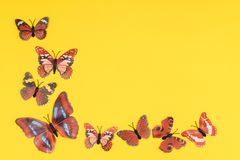 Decorative butterflies. On a colored background Stock Photos