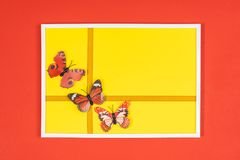 Decorative butterflies. In a white frame on a colored background Stock Images