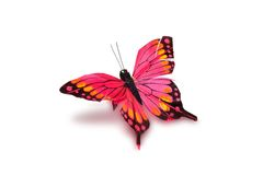 Decorative butterfly. On a white background royalty free stock images