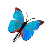 Decorative butterfly Royalty Free Stock Image