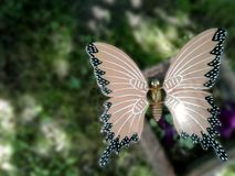 Decorative butterfly in the garden Royalty Free Stock Photography