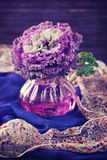 Decorative cabbage flower Royalty Free Stock Images