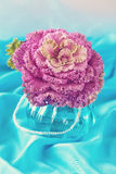 Decorative cabbage flower Royalty Free Stock Photo
