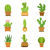 Decorative cactus in pots. Vector set. Desert plants isolate on white background Stock Image