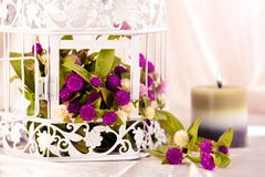 Decorative cage and flowers. Stock Photo