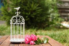 Decorative cage with flowers for wedding ceremony Royalty Free Stock Image