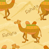 Decorative camel Stock Photography