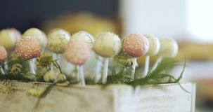 Decorative Candies on wedding stock video