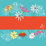 Decorative card with flowers. Fully editable decorative  illustration (easy editing Stock Image