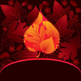 Decorative card with leaf Royalty Free Stock Images