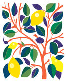 Decorative card with lemons and leaves Stock Image