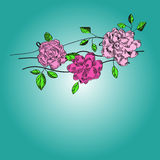 Decorative card with pink flowers Royalty Free Stock Photo