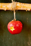 Decorative carved Christmas apple decoration. With a star cut into the red skin hanging by a string on a twig stock photo