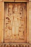 Decorative carvings on the wall, Raniji ki Baori, Bundi, Rajasth Stock Photography