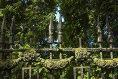 Decorative cast-iron fence. Stock Photography