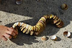 Decorative caterpillar made of bivalve clam seashells on concrete beach molo, small girl hand adding final shells on fr. Multistage decorative caterpillar made Stock Photography