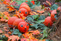 Decorative centipedes of pumpkins, decorations for autumn holidays Stock Photography