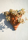 Decorative ceramic flowerpot. Hanging on a wall Royalty Free Stock Photos