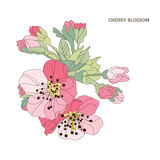 Decorative cherry blossom Stock Image