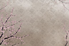 Decorative cherry tree and chinese pattern filigre. Decorative cherry tree with chinese pattern filigree and place for text or image Stock Photo