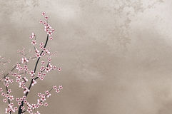 Decorative cherry tree on rough background wi Royalty Free Stock Photos