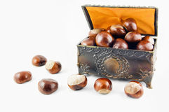 Decorative chest with chestnuts Stock Photography