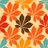 Decorative chestnut pink leaves - Vector Royalty Free Stock Photos