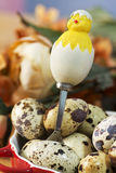 Decorative chick over easter eggs Royalty Free Stock Photography