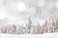 Decorative christmas background. Stock Photography