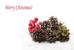 Decorative christmas composition in snow Stock Image