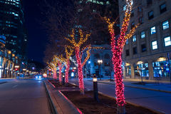 Decorative Christmas lights. Around the trees in the middle of McGill College Street in Montreal Stock Images