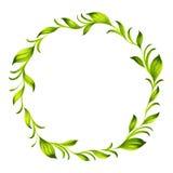 Decorative circle branch of green tea Stock Photo