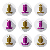 Decorative colorful coat of arms, protection theme symbols. Hera Stock Images