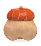 Decorative colorful pumpkin Royalty Free Stock Photography