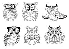 Decorative colorless owls and cute owlets. Colorless decorative owls, cute little owlets and old wise eagle owls with ornamental wings and big eyes. Childish Stock Image