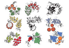 Decorative 02. Components colored decorative vector image Stock Photo