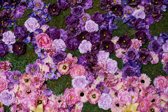 Decorative composition of colorful flowers on the grass Royalty Free Stock Photos