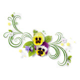 Decorative composition with pansy flowers Royalty Free Stock Image