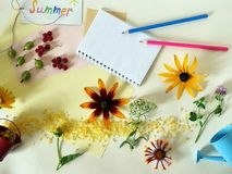 Summer installation of flowers, berries, sea salt on a light background, top view stock photo