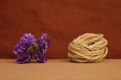 Decorative composition of twine and flowers on a brown background Royalty Free Stock Image