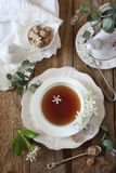 Decorative composition of vintage style: jasmine tea drinking. Decorative composition of vintage style: romantic tea drinking with jasmine tea. Top view Royalty Free Stock Images