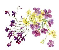 Decorative composition of watercolor flowers royalty free illustration