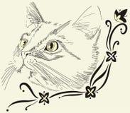 Decorative corner with cat. Decorative corner with nice cat. Vector sketch stock illustration