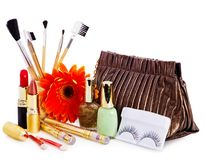 Decorative cosmetics and flower. Stock Images