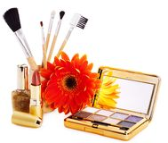 Decorative cosmetics and flower. Stock Image