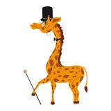 Decorative cute giraffe with cylinder, tie, cane, glasses cartoon vector kids illustration  on white background Stock Photos